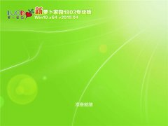 <font color='#0000FF'>萝卜家园 Win10 x64(1803专业版)v2019.04</font>